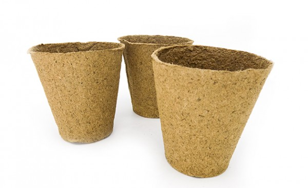 Niem - Verrotbare Pflanztöpfe aus Holzfasern